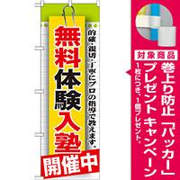 のぼり旗 無料体験入塾 開催中 (GNB-1579) [プレゼント付]