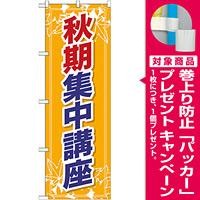 のぼり旗 秋期集中講座 (GNB-1580) [プレゼント付]