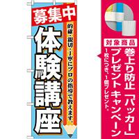 のぼり旗 体験講座 募集中 (GNB-1584) [プレゼント付]