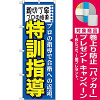 のぼり旗 特訓指導 (GNB-1594) [プレゼント付]