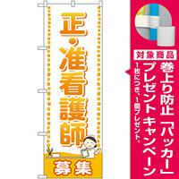 のぼり旗 正・准看護師 募集 (GNB-2519) [プレゼント付]