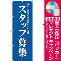 (新)のぼり旗 スタッフ募集(青) (GNB-2715) [プレゼント付]