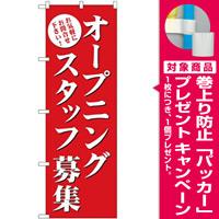 (新)のぼり旗 オープニングスタッフ募集(赤) (GNB-2722) [プレゼント付]