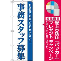 (新)のぼり旗 事務スタッフ募集 (GNB-2729) [プレゼント付]