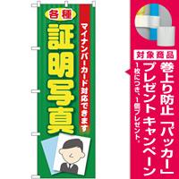 のぼり旗 各種証明写真(マイナンバー) (GNB-2752) [プレゼント付]