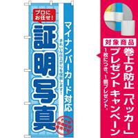 のぼり旗 証明写真(マイナンバー) (GNB-2753) [プレゼント付]