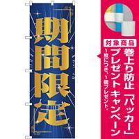 のぼり旗 期間限定 (GNB-2786) [プレゼント付]