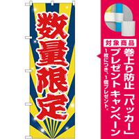 のぼり旗 数量限定 (GNB-2800) [プレゼント付]