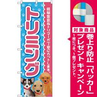 のぼり旗 トリミング ピンク (GNB-2813) [プレゼント付]