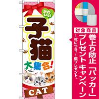 のぼり旗 子猫 (GNB-554) [プレゼント付]