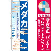 のぼり旗 メダカ killifish (GNB-571) [プレゼント付]