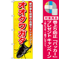 のぼり旗 オオクワガタ (GNB-594) [プレゼント付]