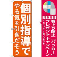 のぼり旗 個別指導でやる気を引きだそう (GNB-60) [プレゼント付]