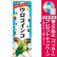 のぼり旗 ウロコインコ (GNB-612) [プレゼント付]