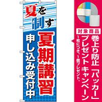 のぼり旗 夏期講習 申し込み受付中 (GNB-70) [プレゼント付]
