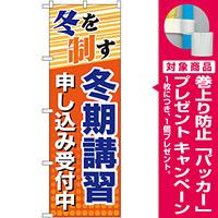 のぼり旗 冬期講習 申し込み受付中 (GNB-71) [プレゼント付]