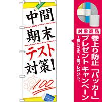 のぼり旗 中間 期末テスト対策! (GNB-75) [プレゼント付]