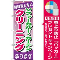 のぼり旗 ソファーカバー・カーテン クリーニング (GNB-782) [プレゼント付]