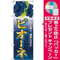 のぼり旗 ピオーネ (SNB-1371) [プレゼント付]