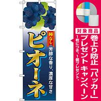 のぼり旗 ピオーネ種なし (SNB-1372) [プレゼント付]