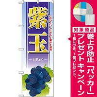 のぼり旗 紫玉 (SNB-1378) [プレゼント付]