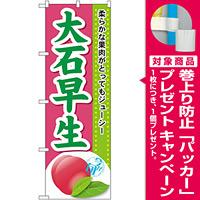 のぼり旗 大石早生 (SNB-1392) [プレゼント付]