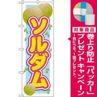 のぼり旗 ソルダム (SNB-1393) [プレゼント付]