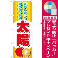 のぼり旗 太陽 (SNB-1394) [プレゼント付]
