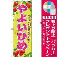 のぼり旗 やよいひめ (SNB-1427) [プレゼント付]