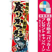 のぼり旗 戻りかつお (SNB-1482) [プレゼント付]