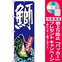 のぼり旗 鰤 (SNB-1508) [プレゼント付]
