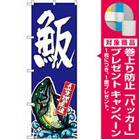 のぼり旗 はまち  (SNB-1509) [プレゼント付]