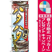 のぼり旗 ハタハタ (SNB-1536) [プレゼント付]