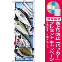 のぼり旗 鮮魚 (イラスト) (SNB-1546) [プレゼント付]
