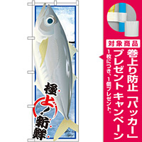 のぼり旗 アジ (イラスト) (SNB-1556) [プレゼント付]