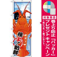のぼり旗 伊勢エビ (イラスト) (SNB-1561) [プレゼント付]