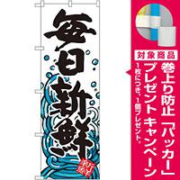 のぼり旗 毎日新鮮 (SNB-1577) [プレゼント付]