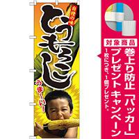のぼり旗 とうもろこし 子供写真 1人 (SNB-2200) [プレゼント付]