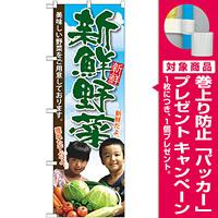 のぼり旗 新鮮野菜 子供写真 (SNB-2206) [プレゼント付]