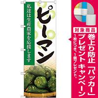 のぼり旗 ピーマン 写真 (SNB-2266) [プレゼント付]