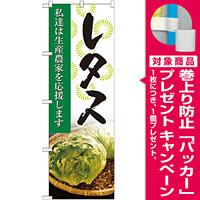 のぼり旗 レタス 写真 (SNB-2269) [プレゼント付]