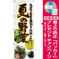 のぼり旗 夏の野菜 写真 (SNB-2396) [プレゼント付]