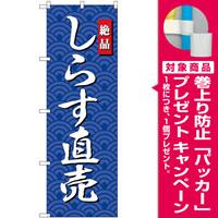 のぼり旗 しらす直売 (SNB-4253) [プレゼント付]