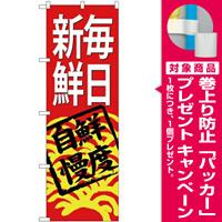 (新)のぼり旗 毎日新鮮(赤地) (SNB-4297) [プレゼント付]