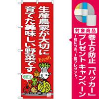 のぼり旗 生産農家が大切に育てた美味しい野菜です (SNB-4365) [プレゼント付]