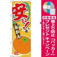 のぼり旗 安い みかん (SNB-4379) [プレゼント付]