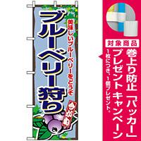 のぼり旗 (1380) ブルーベリー狩り [プレゼント付]
