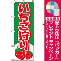のぼり旗 (2219) いちご狩り イラスト グリーン [プレゼント付]