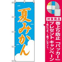 のぼり旗 (2237) 夏みかん [プレゼント付]