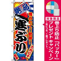 のぼり旗 (2663) 寒ぶり [プレゼント付]